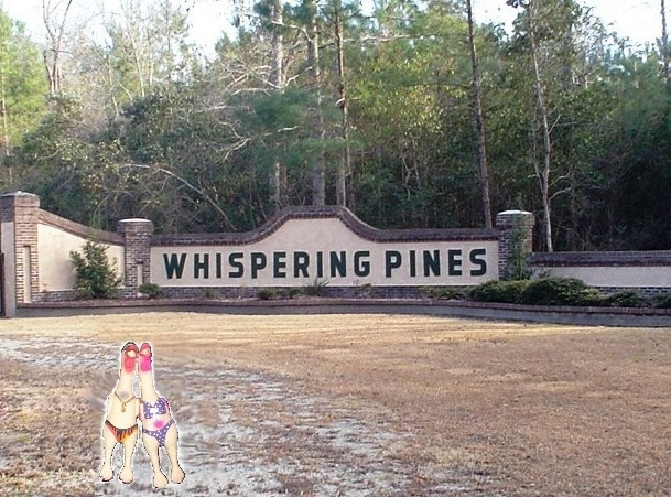 Home Page - Whispering Pines